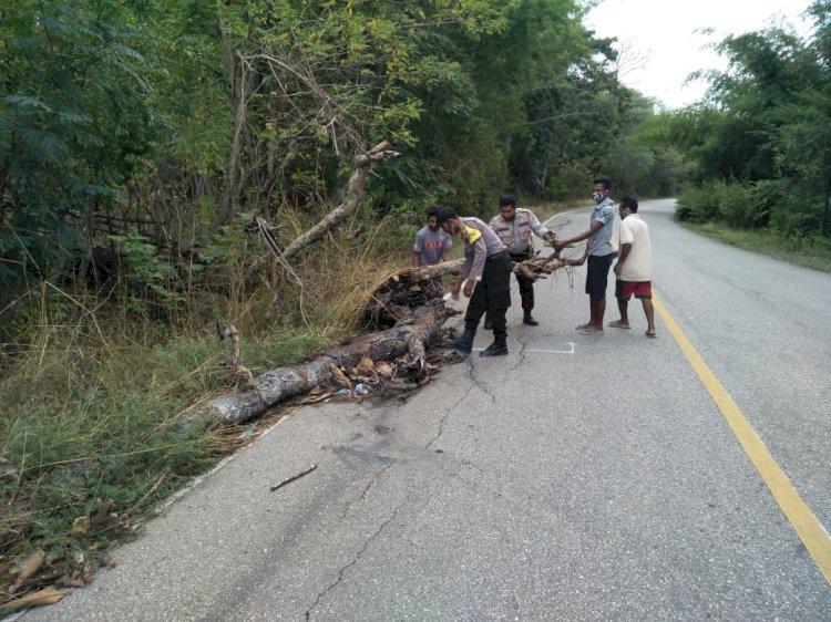 Sering terjadi kecelakaan, Kapolsek Takari inisiatif tambal titik kerusakan jalan